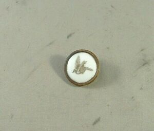 Antique Victorian Porcelain Button Of Extinct North American Passenger Pigeon