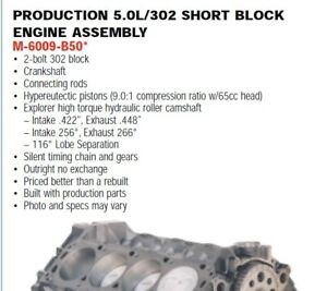 Ford 302 5 0l Short Block