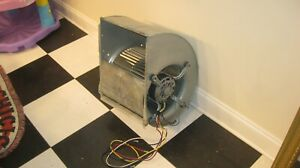 Squirrel Cage Blower Fan Hydro 115 Volt hydro great Deal