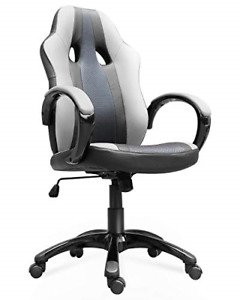 Smugdesk Office Chair High Back Ergonomic Gaming Desk Chairs For Computer With