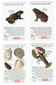 Coca Cola 1930s The World of Nature Series VII - 4 Cards - Life In and Around Th