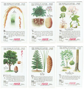 Coca Cola 1930s The World of Nature Series III - 6 Cards - Trees and Other Plant