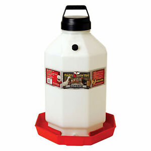 Little Giant Ppf7 7 Gallon Capacity Automatic Poultry Waterer For Chickens Red
