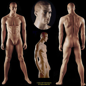 Male Display Mannequin base Full Body realistic Looking Dmaged Defective ma12w