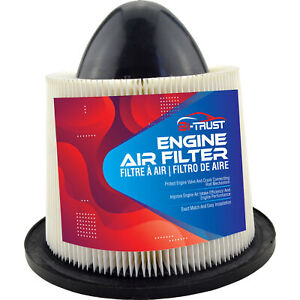 Fit For Ford F 150 F 250 F 350 F450 Mustang Lincoln Blackwood Engine Air Filter