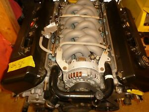 Ford 4 6 Dohc Engine 1995 Mark Viii 3k Miles Teksid Block 4 Valve 4 Cam Cobra