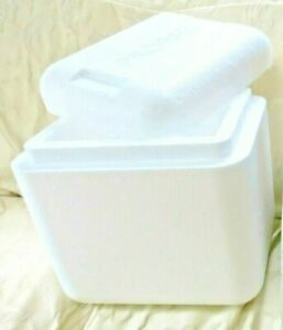 Styrofoam Insulated Cooler Shipping Container 11 X 11 X 9 With Outer Box Euc