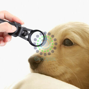 Portable Slit Lamp 310 Special For Pets Examination Ce Approve
