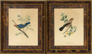 Frames Pair Faux Finish Victorian 7x9 Prints Bird Artistic Publ Co Nyc