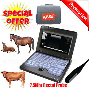 Vet Veterinary Portable Ultrasound Scanner Machine For Cow horse animal rectal