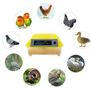 56 New Clear Egg Incubator Digital Automatic Hatcher Temperature Control Poultry