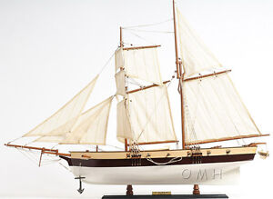 Lynx America S Privateer Tall Ship 34 Wood Painted Model Boat Assembled