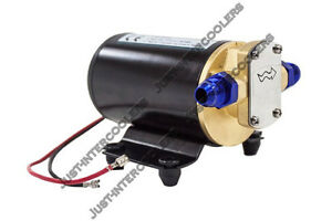 Cx Electric Oil Scavenge Pump For Turbo Oil Feed 12vdc 3 2l Gpm An 10 6 A