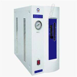 High Purity Hydrogen Gas Generator H2 0 600ml 110 Or 220v A B