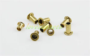 100 1000pc Brass Eyelet Through Hole Rivet Nut Rivet Hollow Grommet M2 5 M3 M3 5
