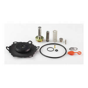 Valve Rebuild Kit with Instructions 302284