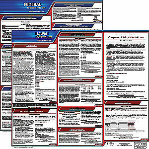 Jj Keller Laminated Paper Labor Law Poster Kit hi english 27 In W 100 hi k