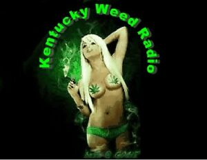 Kentuckyweedradio com Domain Website And Twitter Marijuana Website