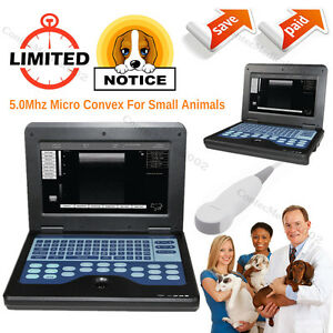 Veterinary Ultrasound Scanner Small Animals Laptop Machine Micro Convex Probe