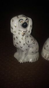 Staffordshire Prince Charles Spaniels Dogs Dated Mid 1800 S Pristine 12 Pair