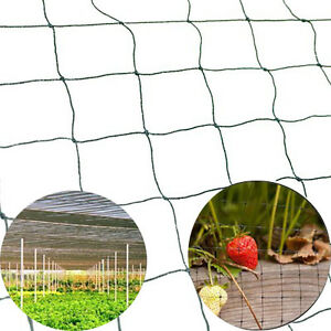 New Bird Netting 25 X 50 Net Netting For Bird Poultry Avaiary Game Pens 683