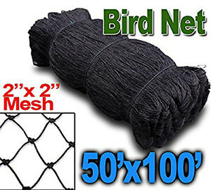 New 100ftx50ft Anti Bird Poultry Chicken Game Fish Game Netting 2 Mesh Hole 468