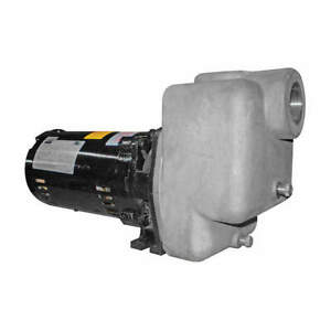 Dayton Self Priming Pump 1 Hp 316 Ss 5gup3