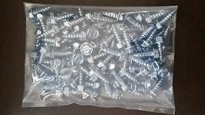 License Plate Screws Slotted Hex Head Self Tapping 100 Per Bag