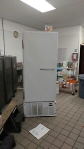 Single Door Freezer 39f