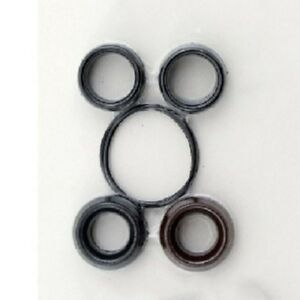 Karcher 9 802 615 0 18 Mm V seal Kit Also Fits Hotsy Landa Legacy Pumps