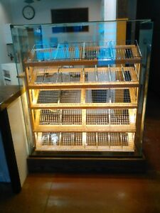 Lighted Bakery Display Case