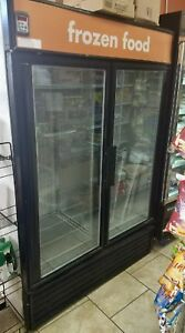 True Gdm 49f 2 Glass Door Freezer Merchandiser