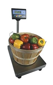 Fairbanks Scale Series 3 Bench Scale 25843
