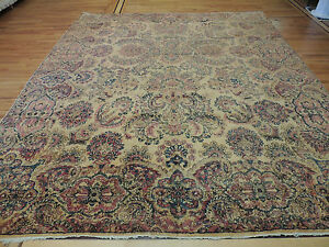 Stunning Antique Persian Kerman 10x12 10x14 Oriental Area Rug Wool