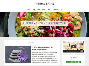 Healthy Living Store Blog Affiliate Website Business For Sale Auto Content