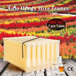 7pcs Auto flowing Honey Beehive Frames Beekeeping Kit Bee Hive Auto Harvest