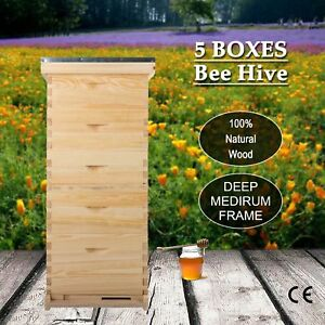 For10 frame Hive Frame bee Hive Frame beehive W Metal Roof For Beekeeping