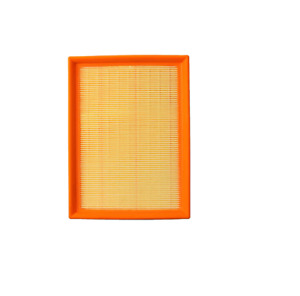 Engine Air Filter E39 525i 528i 530i E46 323i 325i 328i 330i E83 X3 E85 Z4 30946