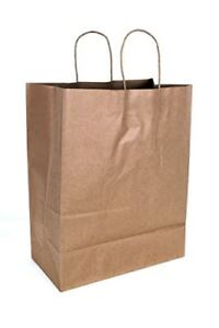 2dayship Paper Retail Shopping Bags With Rope Handles 13 X 7 17 Inches 50 Count