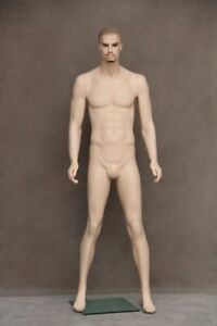 Male Full Body Mannequin Realistic Mannequin With Molded Hair
