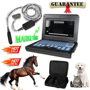 Us Veterinary Bovine equine Ultrasound Scanner endorectal Probe cms600p2 Vet bag