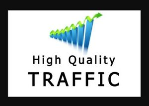 I Will Drive Unlimited Super Targeted Traffic For 60 Days 2 Day Delivery