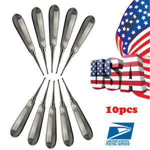 10pcs Dental Dentist Root Tip Elevator Extraction Instruments Stainless Steel Us