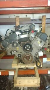Ford Crown Victoria Engine 4 6l Vin V 8th Digit Flex Fuel W oil Cooler 0