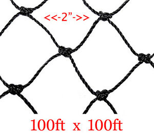 New 100 x100 Anti Bird Baseball Poultry Soccer Game Fish Netting 2 Mesh Hole