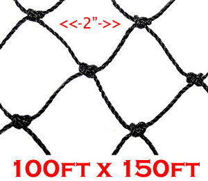 New 100 x150 Anti Bird Baseball Poultry Soccer Game Fish Netting 2 Mesh Hole