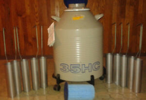 Taylor Wharton 35 Hc Liquid Nitrogen Dewar 35hc With 10 Canisters On Wheels