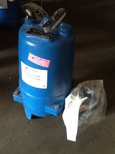Ws0512bf Goulds Pumps 3887bf Submersible Sewage Pump scratch