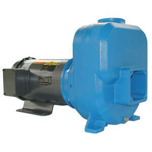 Goulds Water Technology Self Priming Pump 3 Hp cast Iron 30sph90