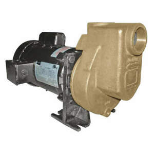 Dayton Self Priming Pump 3 4 Hp bronze 2zxp9